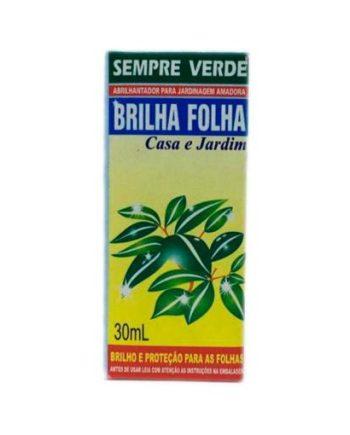 INSETICIDA BRILHA FOLHA 50ML DYMY